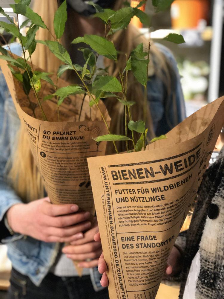 Foto: Blume2000 AG