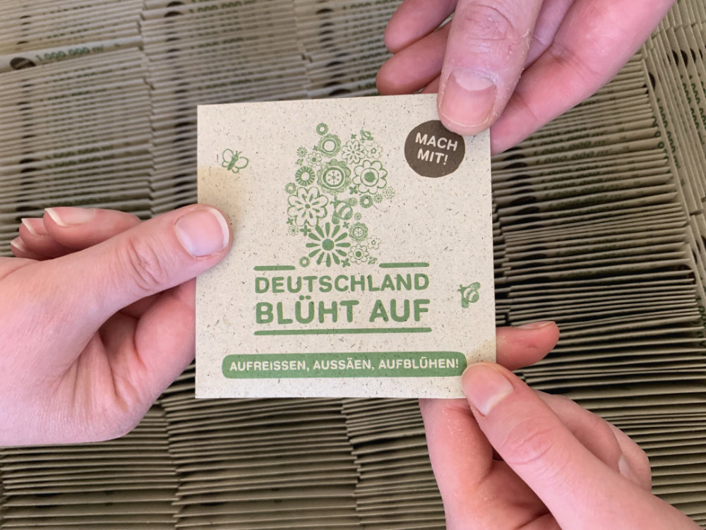 """""""Deutschland blüht auf""""-Saattüten. Foto: Blume2000 AG"""