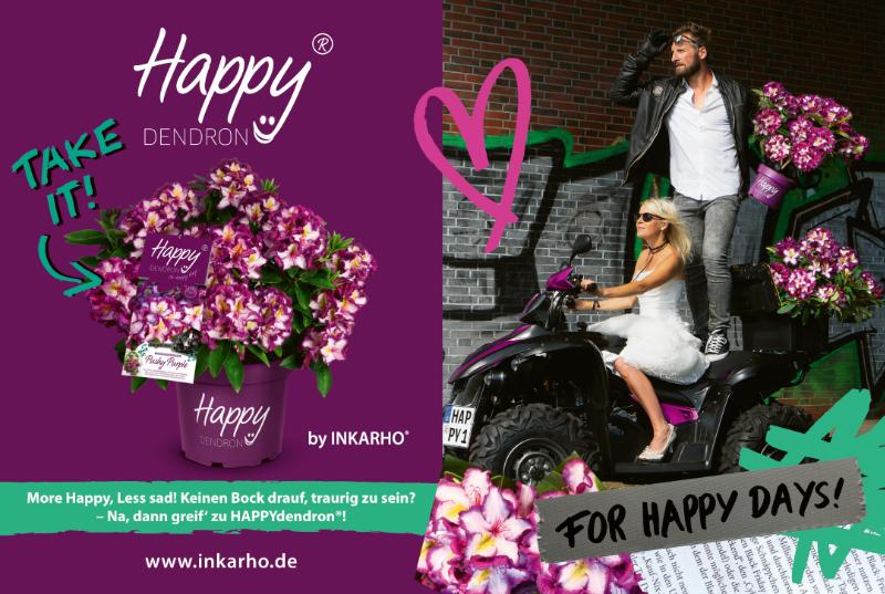 Happy Dendron (Anzeige)