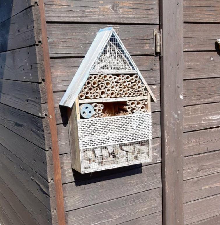 Insektenhotels bieten Bestäubern einen neuen Lebensraum – Foto: Sophie Kretz