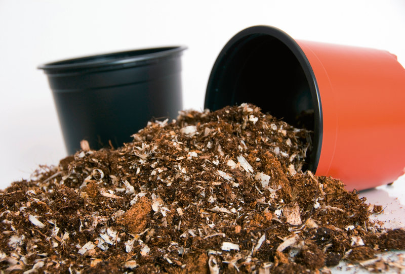 Brill Substrat Ligno-Mix C. – Foto: Brill