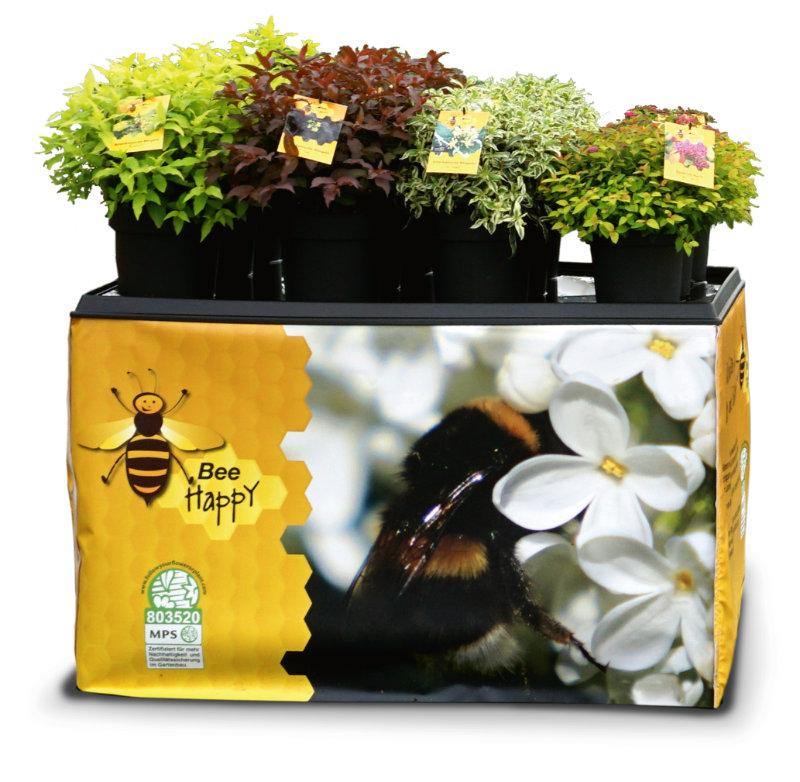 Bee Happy®. Foto: Baumschule zu Jeddeloh Pflanzen